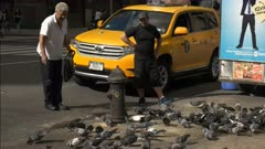 an elderly man feeds pigeons on a new york street