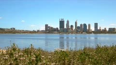 morning view of the skyline of perth and flowers growing beside the swan river in western australia