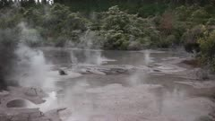 wide view of a boiling mud pool near rotorua on the north island of new zealand