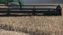 a combine harvester drives away from the camera on a western australian grain farm