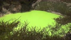 unusual green thermal pool at rotorua on the north island of new zealand