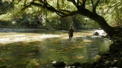 a fisherman, framed by a large beech tree, fly fishing a remote new zealand river