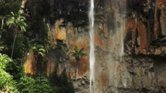 palm trees and the curtain of purlingbrook waterfall in the gold coast hinterland