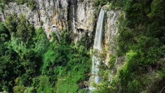 springbrook national park's purlingbrook waterfall in the gold coast hinterland