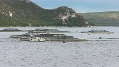 long shot of salmon pens in macquarie harbour on the west coast of tasmania, australia