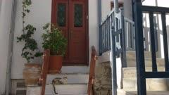 wide view of a pet cat sleeping on house steps in mykonos, greece