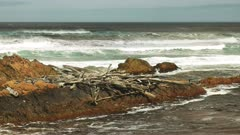 logs and storm debris on the shoreline at the arthur river mouth on the west coast of tasmania, australia