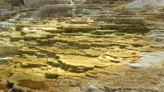 midday close up of mound spring terraces at mammoth hot springs in yellowstone national park, usa