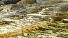 midday panning shot of mound spring at mammoth hot springs in yellowstone national park, usa