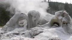 close up of the sculptural looking grotto geyser in yellowstone national park, usa