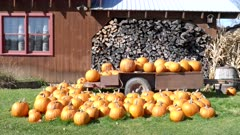 wide shot of fall pumpkins on a trailer at a farm in vermont, usa