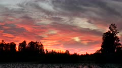 a bright red sunset sky at okeefenokee swamp in georgia, usa