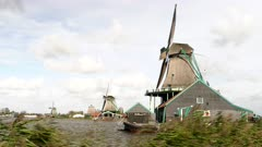 windblown reeds and windmills at zaanse schans near amsterdam in the netherlands