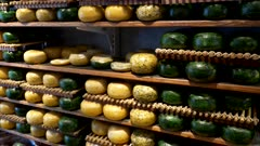 shelves of yellow and green gouda cheese wheels at an amsterdam shop in the netherlands