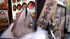 a tuna head on ice outside a restaurant at tsukiji fish market in tokyo, japan