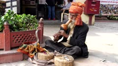a snake charmer plays music for a cobra snake on a street of delhi, india