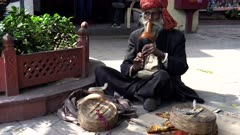 a snake charmer plays for a snake to perform in new delhi, india