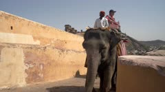 tourists riding elephants at amber fort in jaipur, india