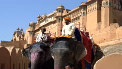 close up of mahout riding an elephant at amer fort in jaipur, india