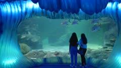 two girls watch large fish swimming in a tank at sealife aquarium in sydney, australia