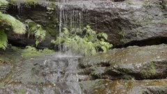 close up of a small waterfall near katoomba in the blue mountains of nsw, australia