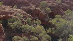 panning shot of rock formations and trees at kings canyon in watarrka national park of the northern territory, australia