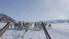 Arctic Stock Footage