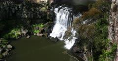 Ebor Falls up