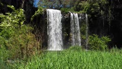 Dangar Waterfalls. base,  slowmotion