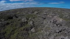 Nullarbur Desert, South Australia, POV, atop of Great Australian Bigh