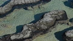 Stromatolites at Shark Bay close up