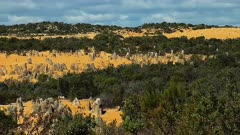 The Pinnacles Desert, widem bushy area