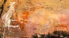 Aboriginal Art in Kakadu, pan to a kangaroo kill