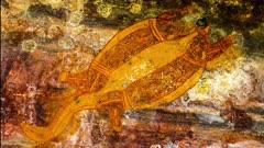 Aboriginal Art in Kakadu, turtle