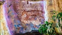 Aboriginal Art in Kakadu, zoom in to Tasmanian Tiger