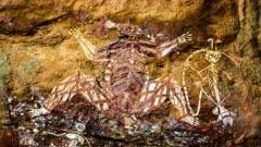 Aboriginal Art in Kakadu, zoom in, many figures