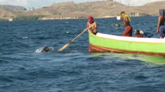 People catching fish by using fish bombing techniques