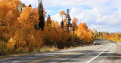 Beautiful autumn mountain forest vehicle travel. Beautiful season Autumn fall colors in Aspen Pine forest. Skyline Drive Manti La Sal Forest central Utah. Golden yellow, red and orange  leaves. Exploring natural scenic landscape before winter. High mountain peaks and plateau. Nature and creations of Earth. 4K UHD HD video footage. Despain Rekindle Photo. 692