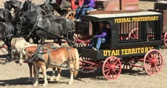 Historic prison jail wagon horse team. Gentle Giant draft horse pull heavy antique wagons. Highly trained and decorated to demonstrate traditional farm and industrial use. Heavy, tall and strong. Working farm animal used to pulling heavy loads. Competition, show, demonstration trials. Can weigh up to 3,000 pounds. DCI 4K video footage. Despain Rekindle Photo. 590