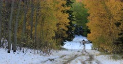 Motorcycle mountain road snow autumn colors. Enjoy beauty of seasonal Autumn colors early winter snow, exploring high mountain roads and trails. Riding sports utility vehicle UTV side by side 4x4 4 wheel drive ATV high mountain and valley. Fall colors, beautiful nature before winter sets in. Great outdoors and landscape. Forest Aspen and pine trees. Exploring. Popular travel and sport drive in central Utah. 4K HD footage video. Despain Rekindle Photo. 498