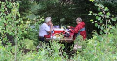 Picnic in forest near lake older mature friends. Having a lunch break on shore of high mountain lake in the pine forest. Green plants surround the people. Summer day and great company. 4K HD video footage. Despain Rekindle Photo. 1211