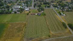Aerial rural farm field home and city traffic. Farming fields harvest season time. Aerial rural farming community agricultural economy. Spring summer weather mountain valley green agriculture field. Seasonal rural farm city. Homes, barns and buildings. Drone flight. 4K HD video footage. Despain Rekindle Photo. 039