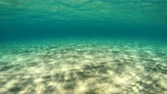 Moving forward underwater between sandy seabed and water surface, natural scene, Mediterranean sea, France