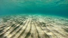 Sandy seafloor and water surface underwater, natural scene, Mediterranean sea, France