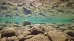 Underwater rocky riverbed in shallow water reflected in the calm water surface, La Muga, Girona, Alt Emporda, Catalonia, Spain