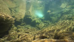 Underwater landscape in a rocky stream with clear water, La Muga river, Spain, Catalonia