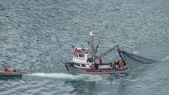 Aerial view of Seine fishing boats catching fish in Southcentral Alaska