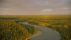 Aerial of an Alaskan boreal forest during a summer sunset