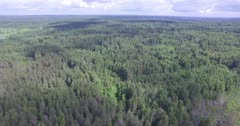 Scenic. Drone aerials over vast forest and surrounding vegetation.