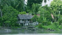typical lower Sepik House designed to survive floods